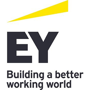 Senior Project Manager (Tax) - Contractor